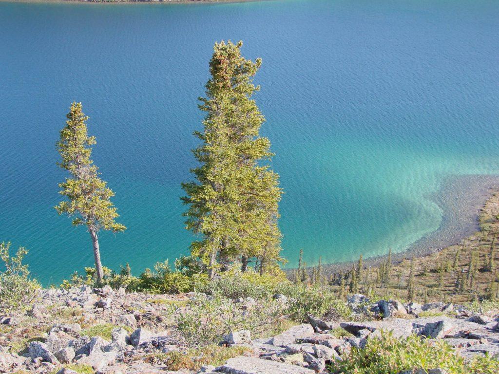 Water Stewardship in the Northwest Territories