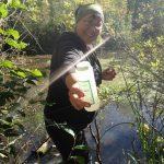 Trout Lake Water Quality Sampling 2015-2016